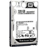 Hard Disk Western Digital 320 gb WD3200BEKT